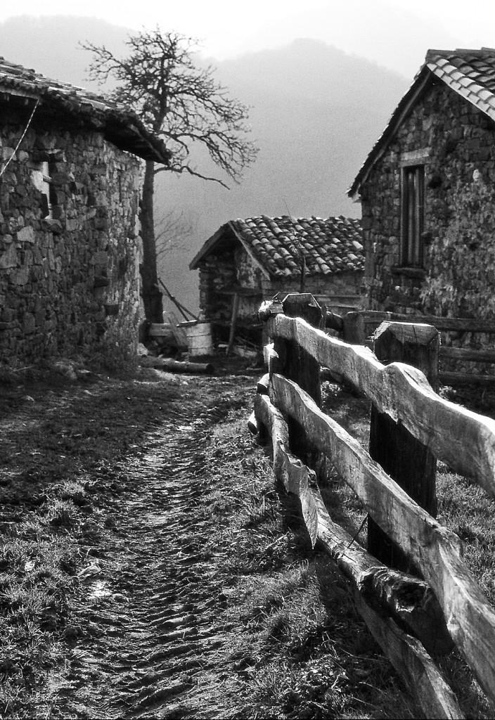 La Infiesta. Caso. Asturias.