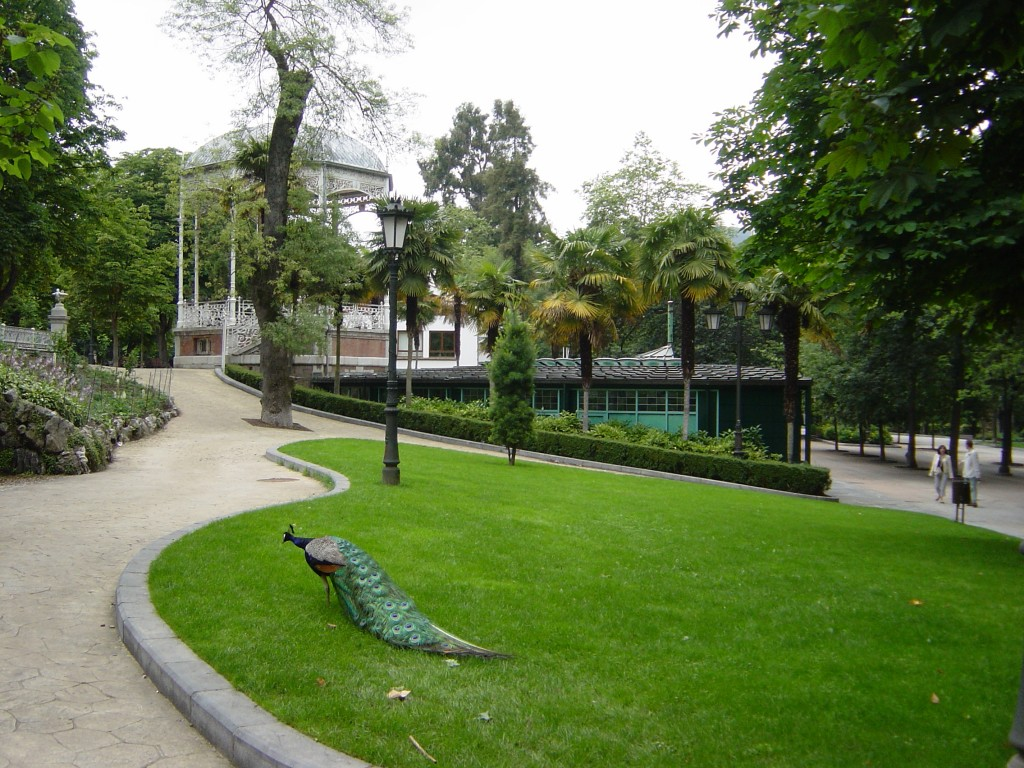 PARQUE_SAN_FRANCISCO_PAVO_REAL2