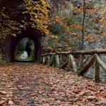 La senda del Oso, senderismo en Asturias