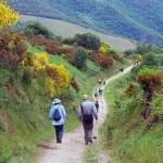 Camino de Santiago en Asturias