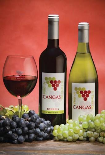 vino-de-la-tierra-de-cangas-asturias-340x500
